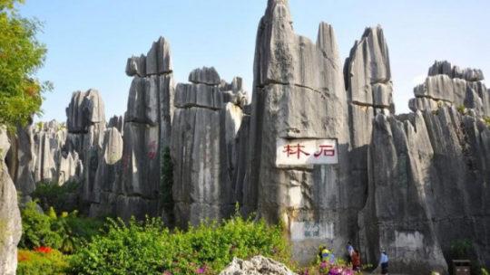 Чудеса света: каменный лес Шилинь в Китае